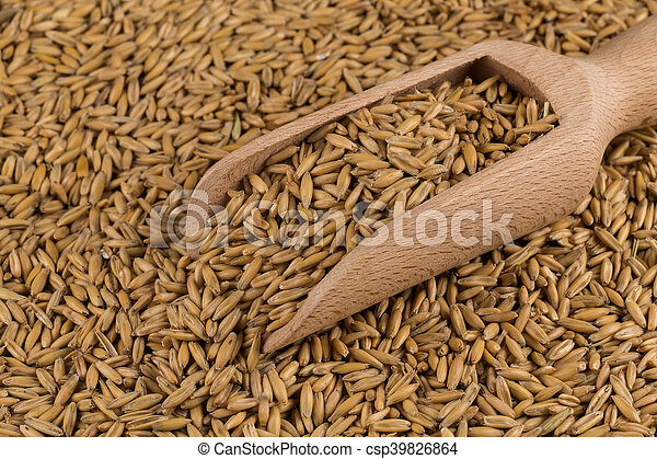 natural oat grains background, closeup - csp39826864