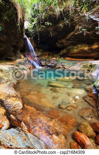Natural pool - csp21684309