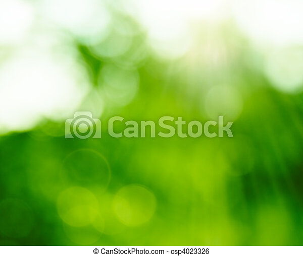 Natural Summer Forest Bokeh With Sun Rays. Blurred ecology background. - csp4023326