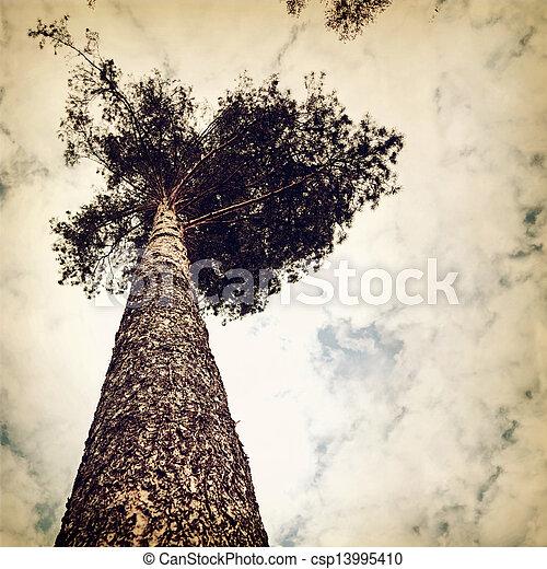 Nature-27 - csp13995410