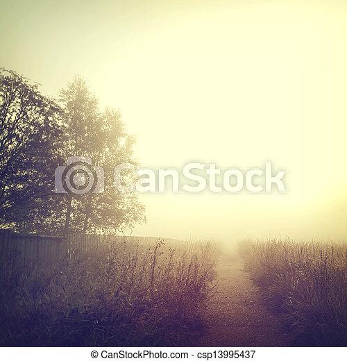 Nature-34 - csp13995437