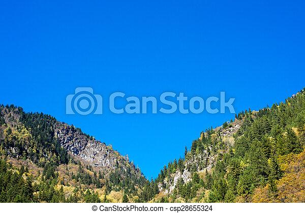 Nature background - csp28655324
