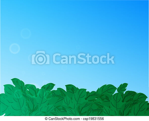 Nature background with green grass and blue sky - csp19831556