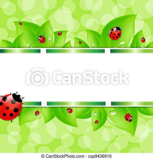 Nature Background With Ladybug - csp9436916