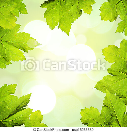 Nature Background with maple leaves - csp15265830