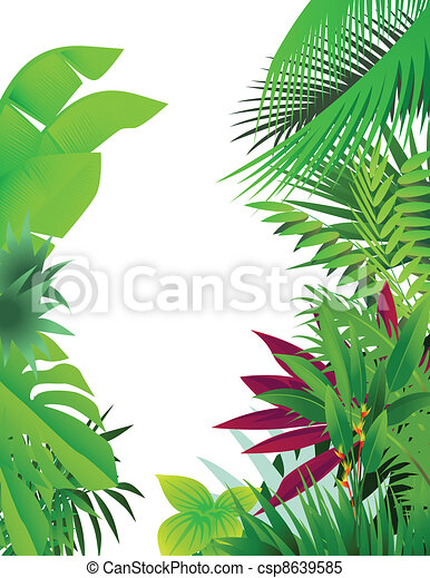 nature forest background - csp8639585