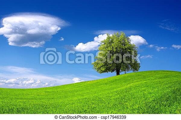Nature green landscape - csp17946339