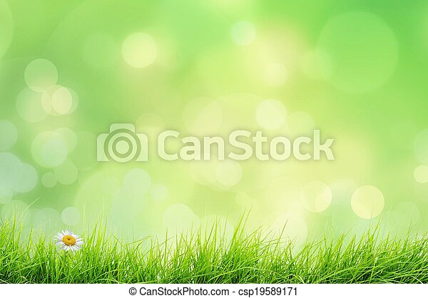 Nature landscape with grass  - csp19589171