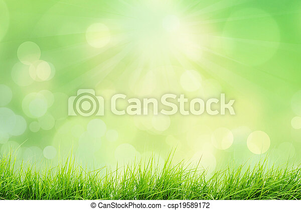 Nature landscape with grass - csp19589172