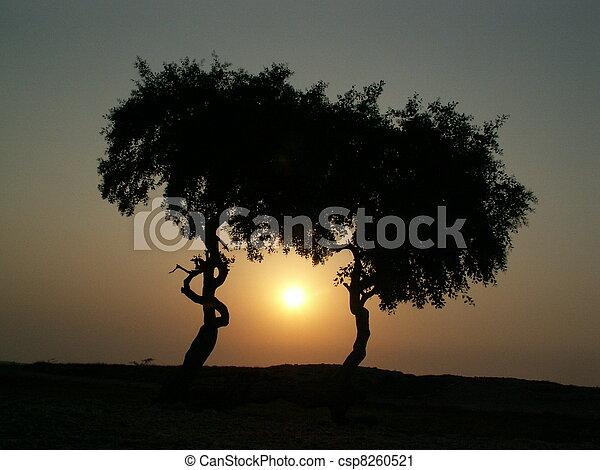 Nature, Pakistan