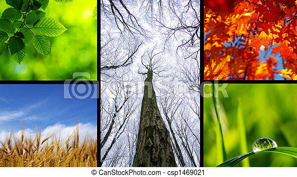 nature - csp1469021