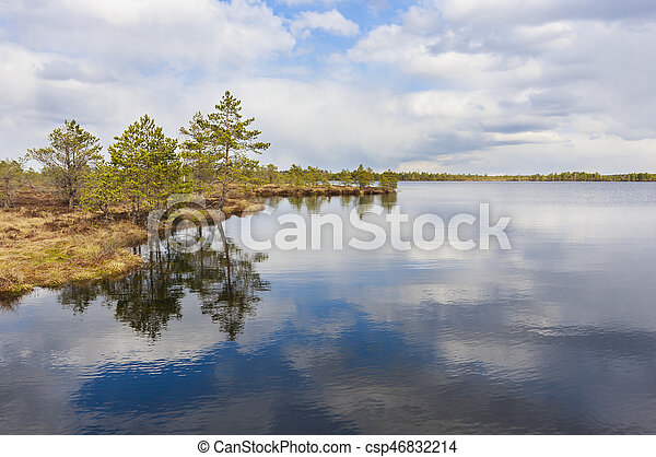 Nature schenry of lake, trees and cloudy sky - csp46832214