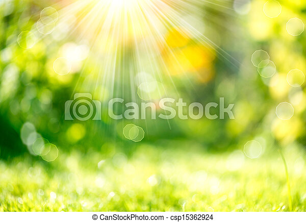 Nature Spring Blurred Background with Sunbeams - csp15362924