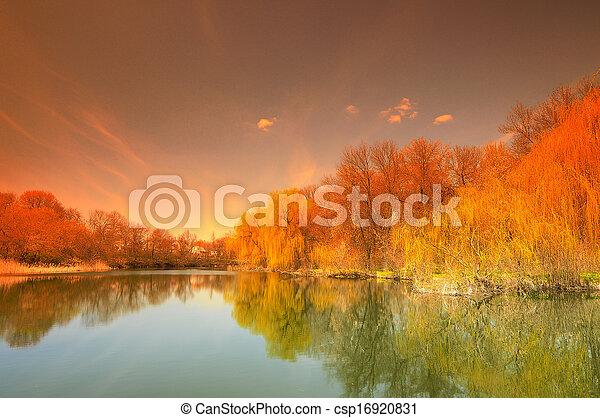nature - csp16920831