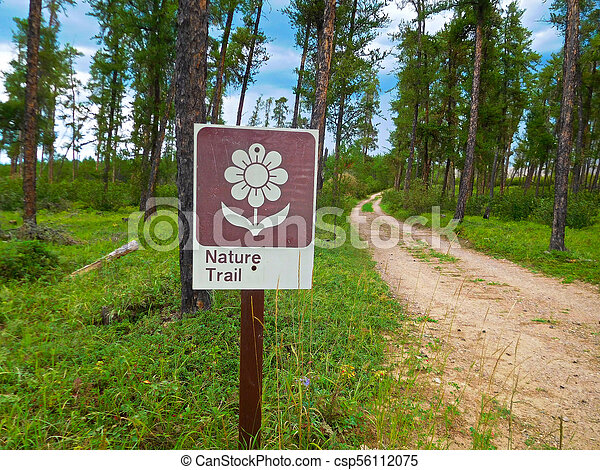 Nature Trail Sign in a Forest - csp56112075