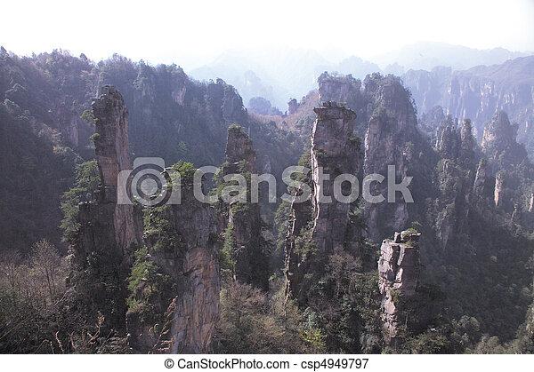 Nature View - csp4949797