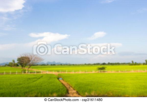 Nature view - csp31611480