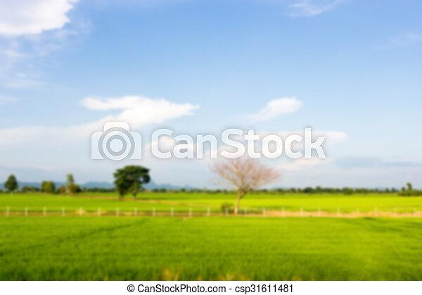 Nature view - csp31611481