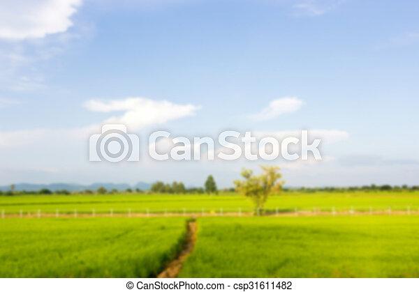 Nature view - csp31611482