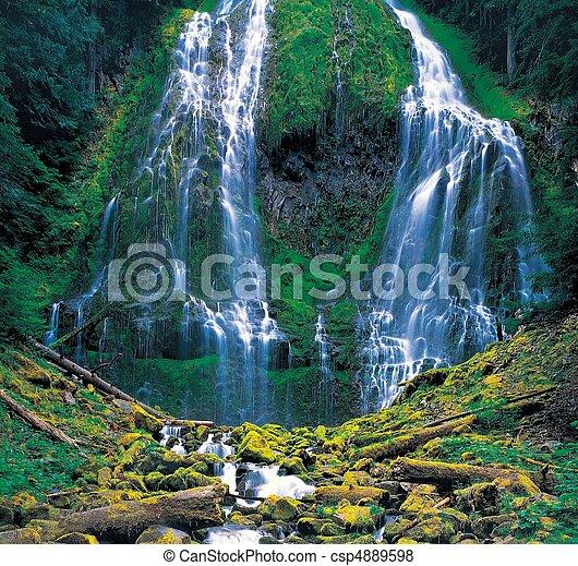 Nature View - csp4889598