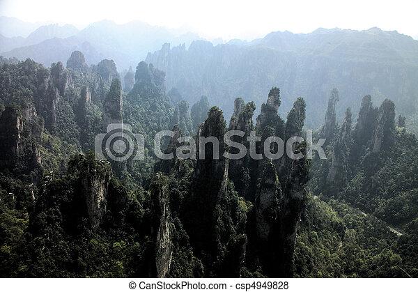 Nature View - csp4949828