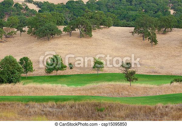 nature view - csp15095850