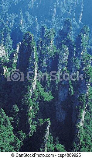 Nature View - csp4889925