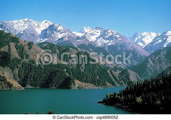 Nature View - csp4890052