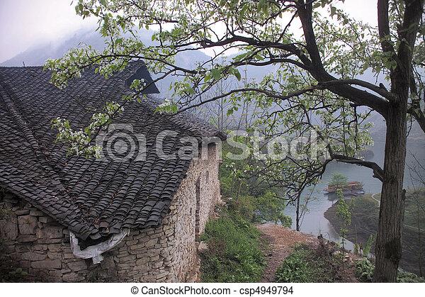 Nature View - csp4949794