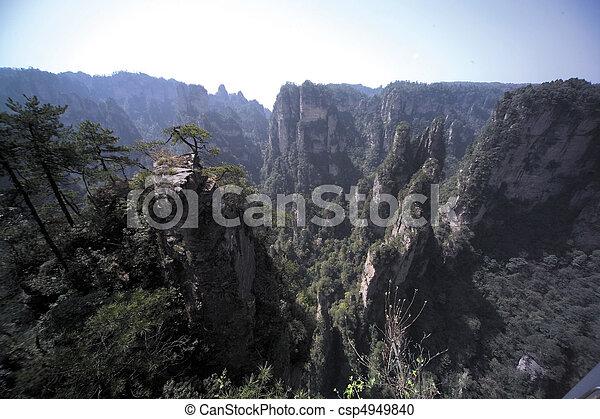 Nature View - csp4949840