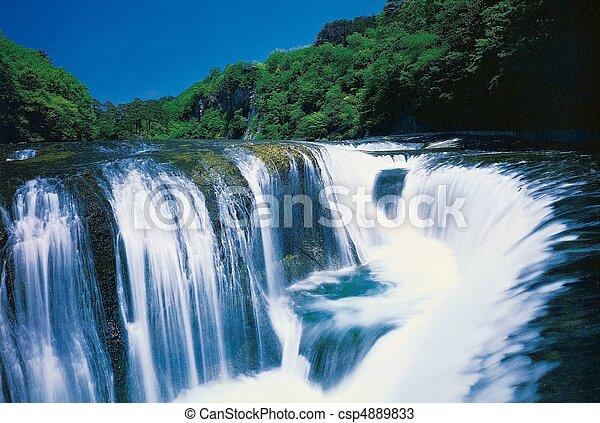 Nature View - csp4889833