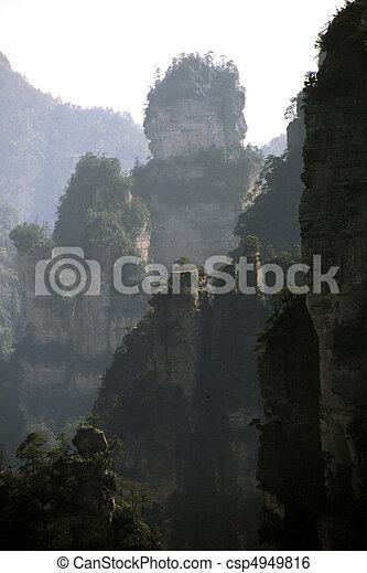 nature, vue - csp4949816