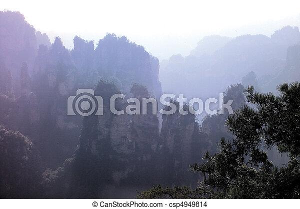 nature, vue - csp4949814