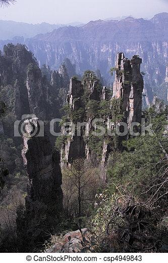 nature, vue - csp4949843