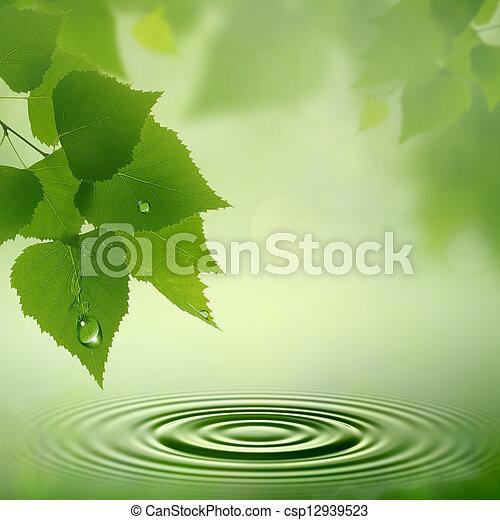 naturel, résumé, arrière-plans, dew., matin, conception, ton - csp12939523