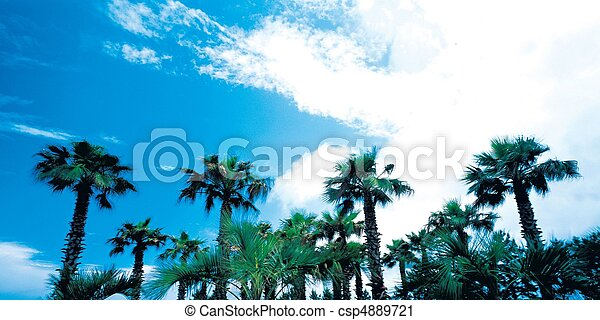 natuur, aanzicht - csp4889721