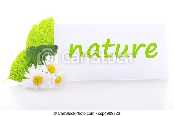 natuur - csp4989723