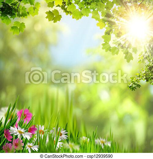 natuurlijke , abstract, achtergronden, leaves., ontwerp, jouw, esdoorn - csp12939590