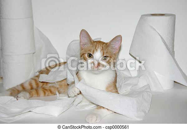 naughty kitty - csp0000561