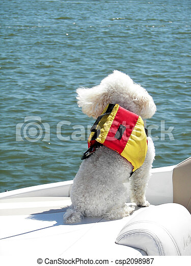 Nautical Pup - csp2098987