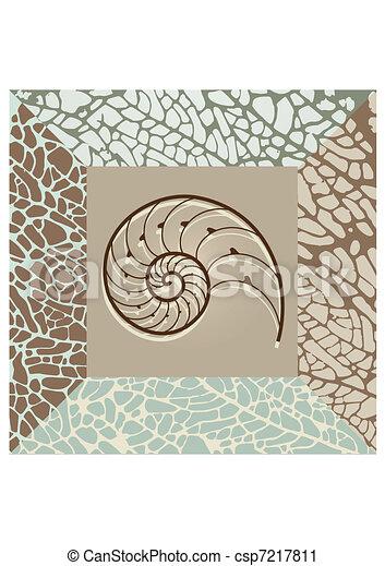 Nautilus shell background. - csp7217811