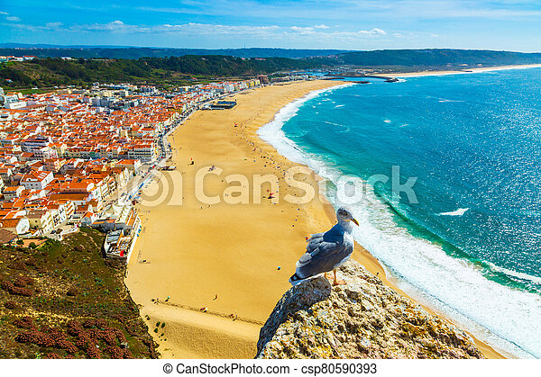 Nazare, Portugal: Panorama of the Nazare town and Atlantic Ocean with seagull bird in the foreground, seen from Nazare Sitio hill - csp80590393