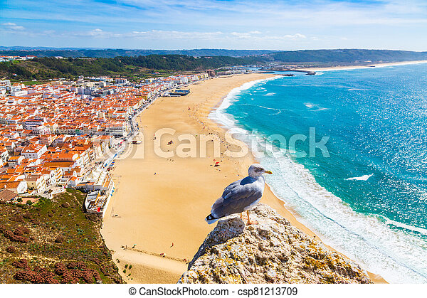 Nazare, Portugal: Panorama of the Nazare town and Atlantic Ocean with seagull bird in the foreground, seen from Nazare Sitio hill - csp81213709