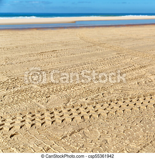 near the ocean the sand track of the cars - csp55361942