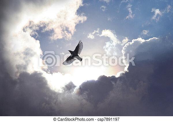 nebe, ptáček, anděl - csp7891197