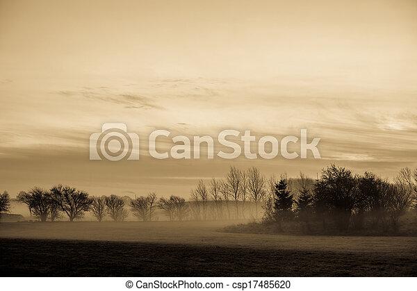 Morgen Nebel - csp17485620