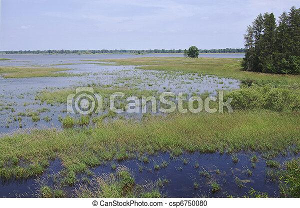 Necedah Wildlife Refuge Wetland Expanse - csp6750080