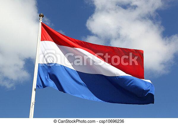 nederländsk, dag, flagga, medborgare, frihet - csp10696236