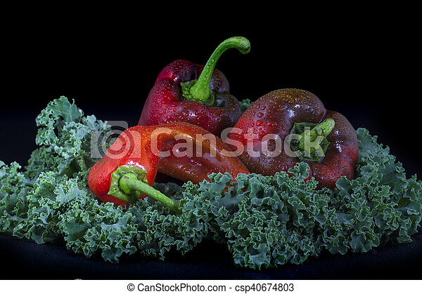 Paprika y col rizada en fondo negro - csp40674803