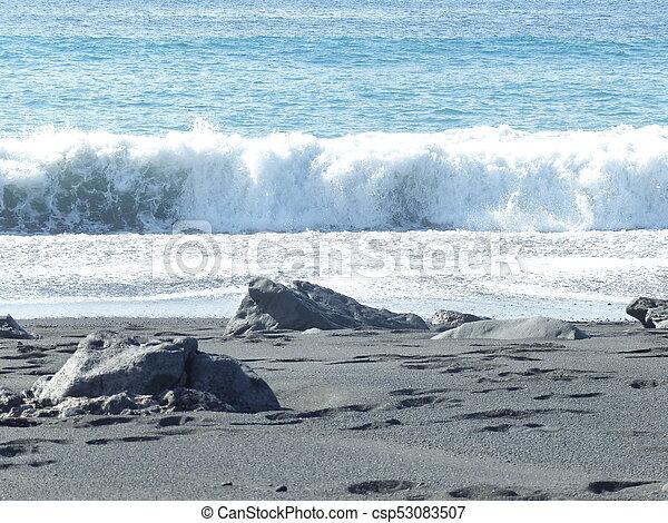 Playa negra - csp53083507